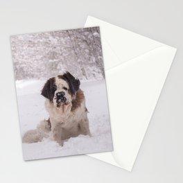 St Bernard dog on the snow Stationery Cards