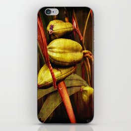 Hanging over the pond iPhone Skin