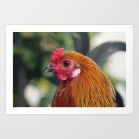 cock Art Prints featuring Cock by Falko Follert Art-FF77