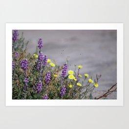 Arial Raid on Flowers Art Print