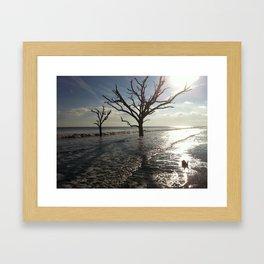 Botany Bay Framed Art Print