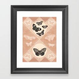 Fluttering in the Moonlight Framed Art Print