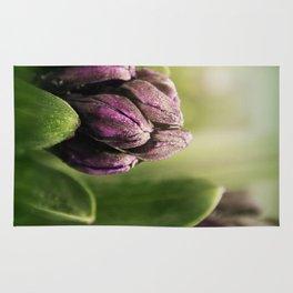 Hyacinths in Dew Rug