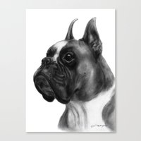 boxer Canvas Prints featuring Boxer  by Danguole Serstinskaja
