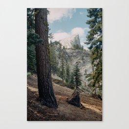 Half Dome Canvas Print