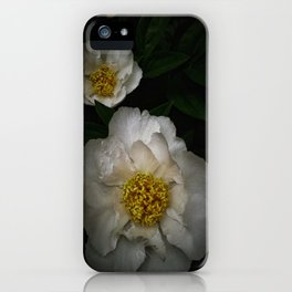 Peony 10 iPhone Case