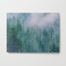 Foggy Forest in Squamish, British Columbia Metal Print