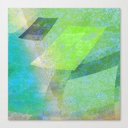 woozy 6b 1f det1 Canvas Print