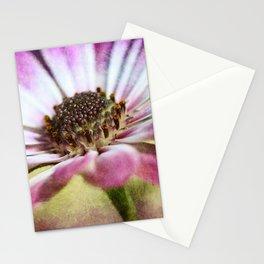 Purple Osteospermum Textured Stationery Cards