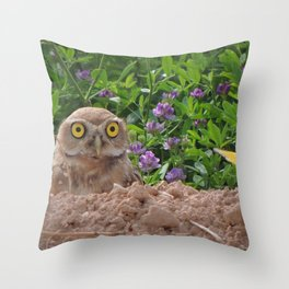 Owl and Butterfly Throw Pillow