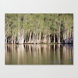 Duck Lake Canvas Print
