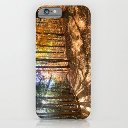 Vaughan Woods Foliage (2) iPhone Case