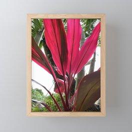 Red Fanning Leaves Framed Mini Art Print