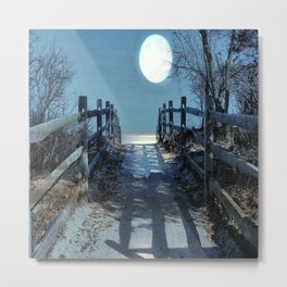 Under The Moonbeams Metal Print