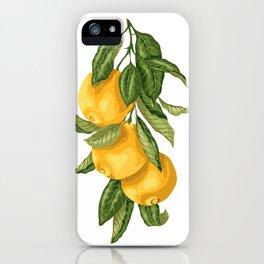 Orange Lime Field iPhone Case