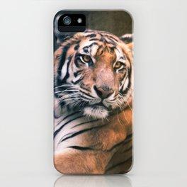 Tiger No 6 iPhone Case