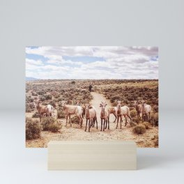 The Final Frontier Mini Art Print