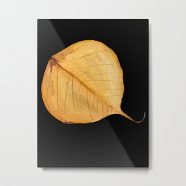 89 - A leaf, a simple art from Nature Metal Print