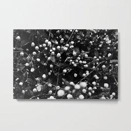 Tiny branches Metal Print