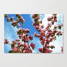 Sky/Flowers Canvas Print