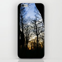 Forest Park Trail at Sunset in NYC iPhone Skin