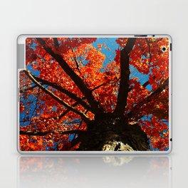 Trees on Fire Laptop & iPad Skin
