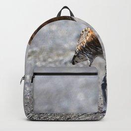 Watercolor Bird, Godwit 10, Borgarnes, Iceland Backpack