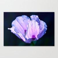 poppy Canvas Prints featuring Poppy by CrismanArt