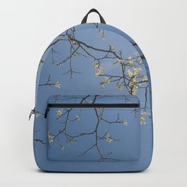 Look Up To The Sky And See Backpack