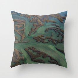 Intracoastal Waterway Marsh Maze Throw Pillow