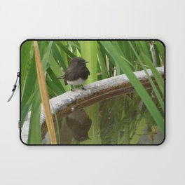 Black Phoebe at the Fountain Laptop Sleeve