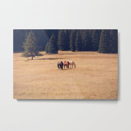 Montana Collection - Horses on the Ranch Metal Print