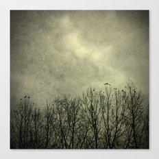 Days of darkness Canvas Print