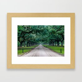 Tangled Trees Framed Art Print