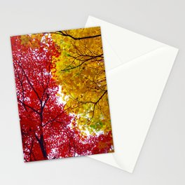 Red and Yellow Stationery Cards