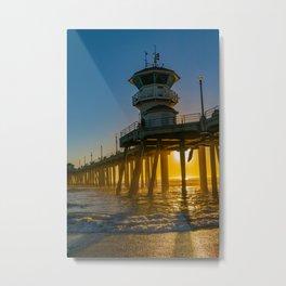 Seagull Photo Bomb Metal Print