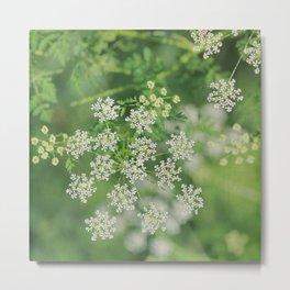 Garden Snowflakes  Metal Print