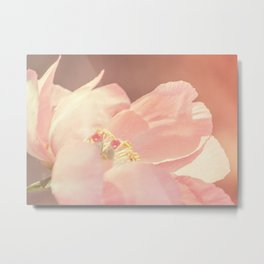 Single Pink Peony Flower Metal Print