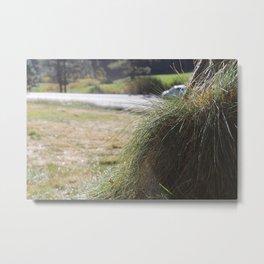 Grass Mounds Metal Print