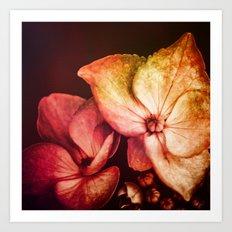 Dream Flower 6 Art Print