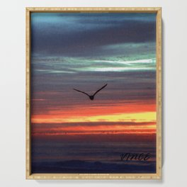 Black Gull by nite Serving Tray