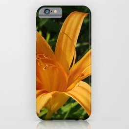 Daylily Summer iPhone Case