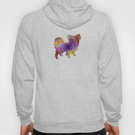 Papillon in watercolor Hoody