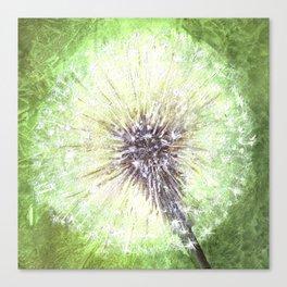 Green Dandelion Canvas Print
