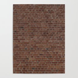 NYC Big Apple Manhattan City Brown Stone Brick Wall Poster