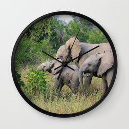 Elephant Family Wall Clock