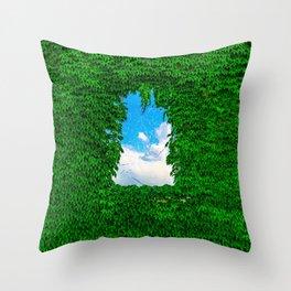 Bird's Window Throw Pillow