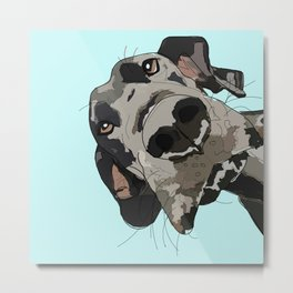 Great Dane in your face (teal) Metal Print