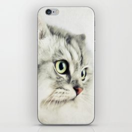 Cat portrait iPhone Skin