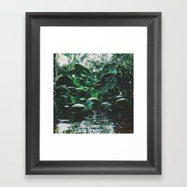 BOLŻ Framed Art Print